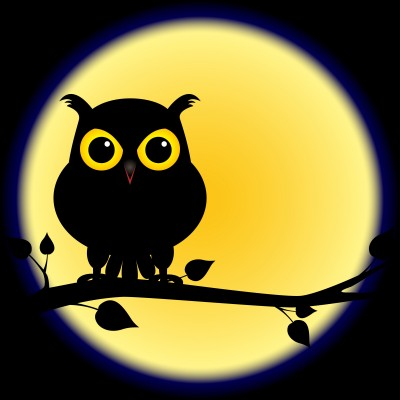 http://www.early-riser.com/images/night-owl.jpg